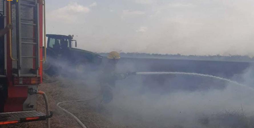 пожар, поле, пшеница, одесская область, фото