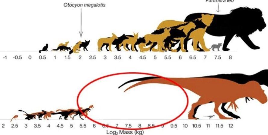 динозавры, виды динозавров