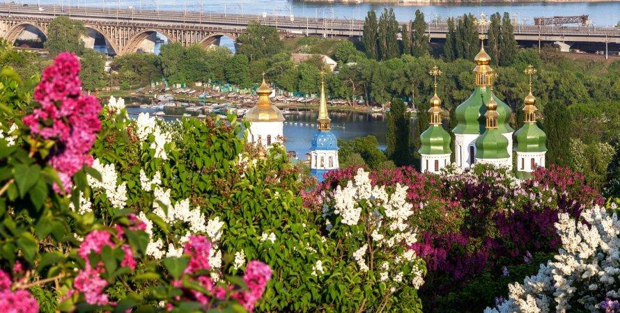 Киев, сирень, ботанический сад