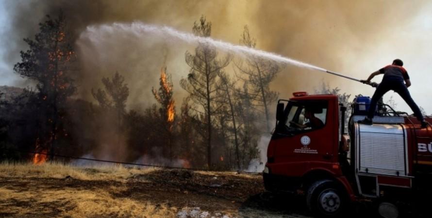 Турция, леса, пожары,