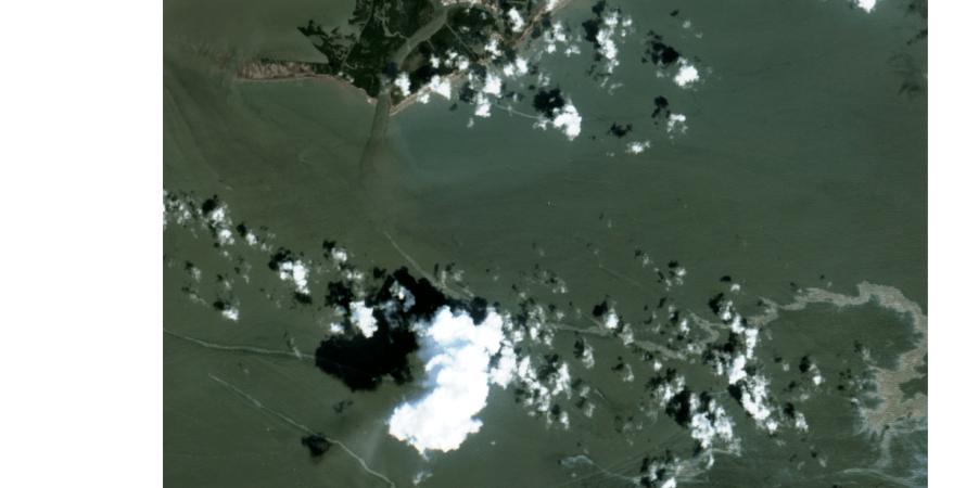 розлив нафти, мексиканська затока, сша