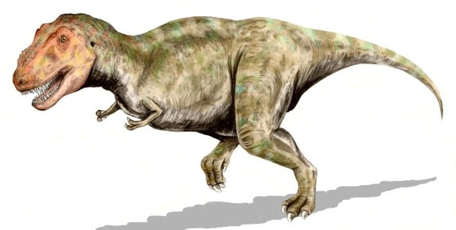 Тираннозавр. Иллюстрация: Nobu Tamura, commons.wikimedia.org
