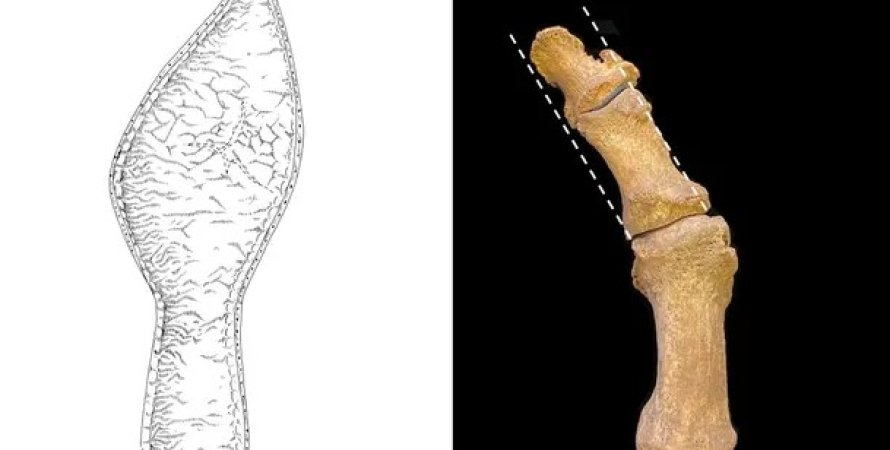 Кость стопы и средневековая обувь