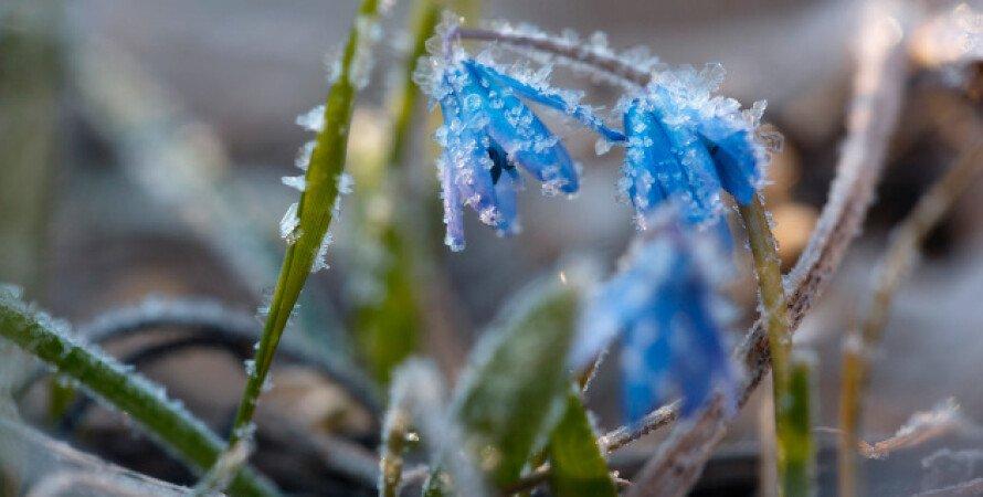 заморозки, ухудшение погодных условий, предупреждение ГСЧС, опасность