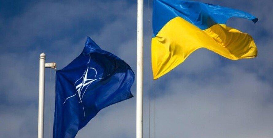 Україна, нато, ПДЧ, альянс