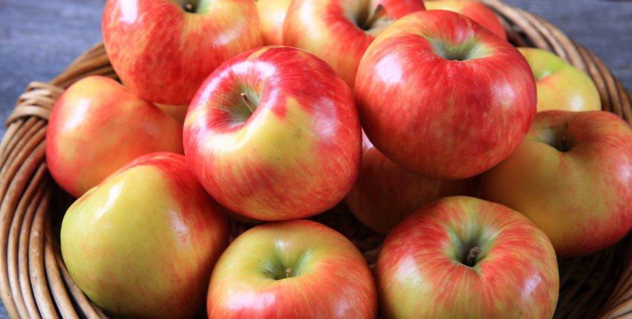 Яблочный Спас - освященные яблоки в корзине