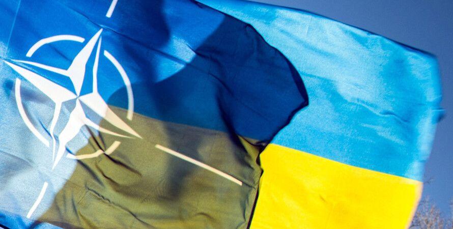 украиноязычный сайт нато