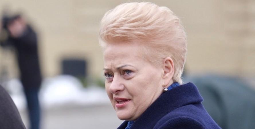 Даля Грибаускайте, Грибаускайте, президент Литвы, коррупция, минобороны Украины, Украина, коррупция в Украине