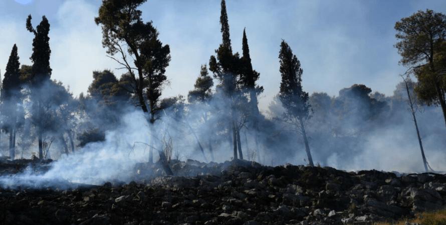 Пожар в Черногории, лесной пожар, Подгорица