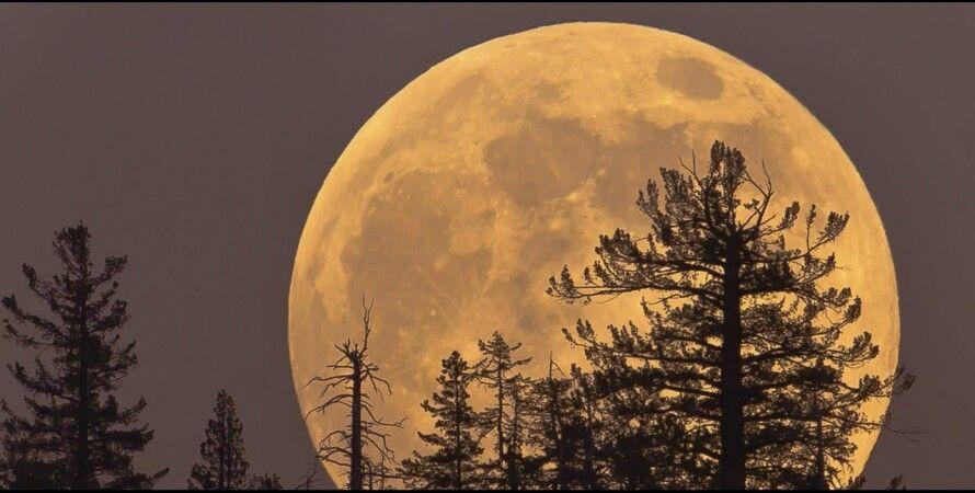 Фото: suggestive.com