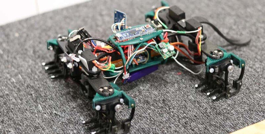 робот может выполнять те же функции, что и настоящая ящерица