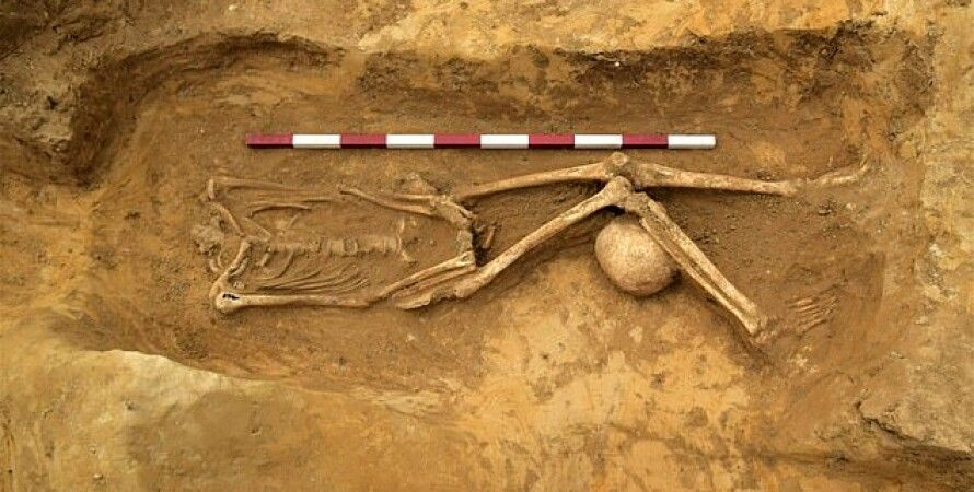 Фото: Archaeological Solutions