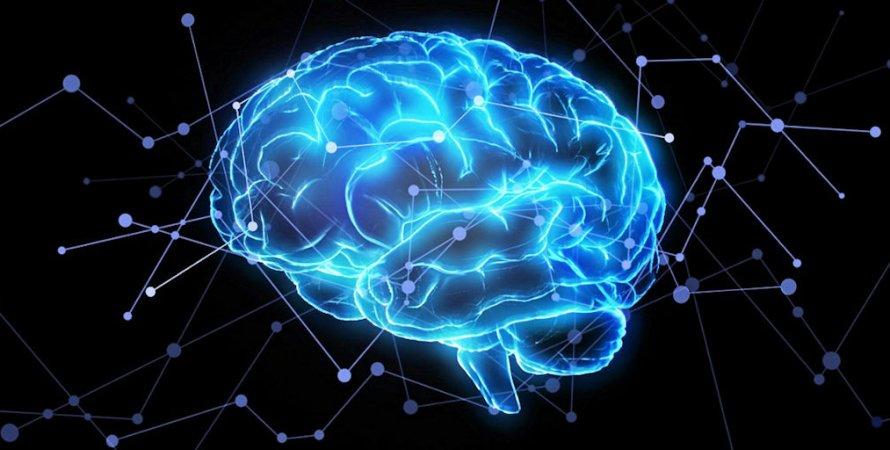 пам'ять, мозок, людина, фото