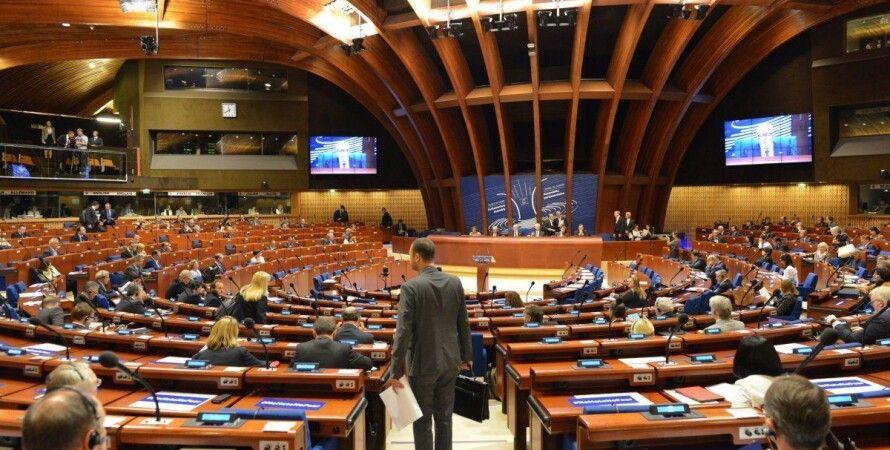 пасе, российская делегация в пасе, украина обжаловала, украинская делегация, гончаренко, мезенцева