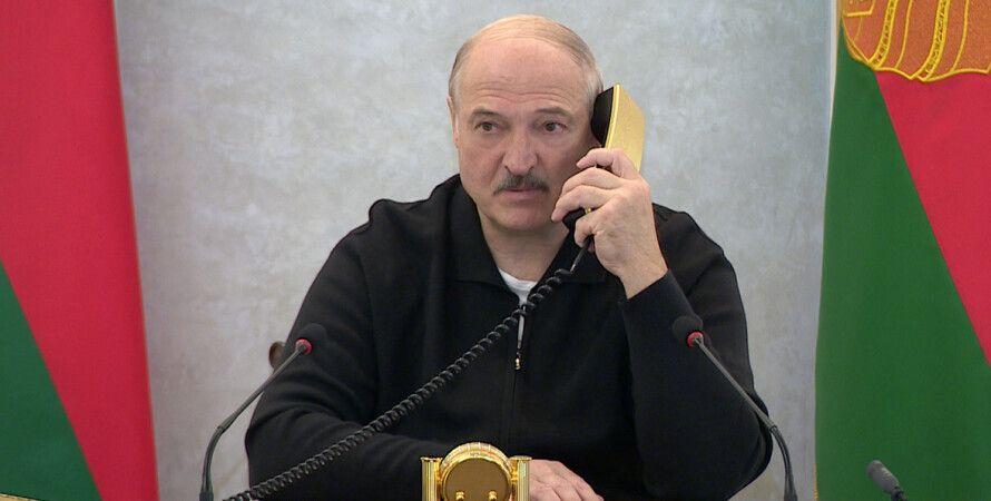 образу, беларусь, Telegram, Олександр Лукашенко, вирок, колонія