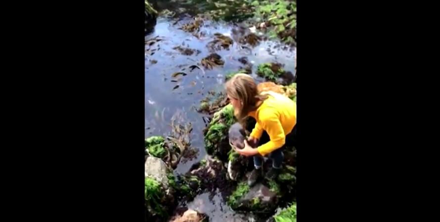 девочка акула спасение австралия
