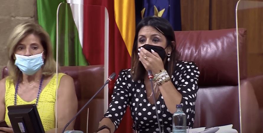 Андалусия, парламент, крыса