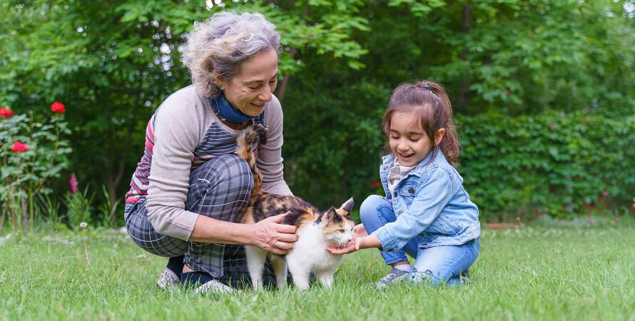 бабуся, внучка, домашня тварина