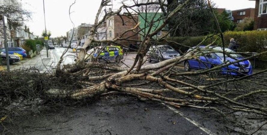ураган Бэлла, Великобритания, Франция, Бельгия, Поезда, Ветер, Затопление