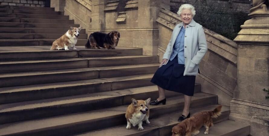 Королева Єлизавета, коргі, собаки