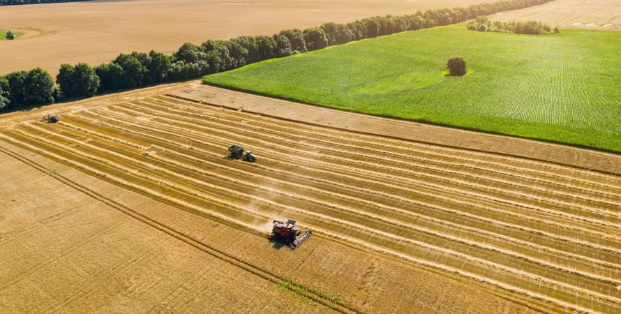 Урожай 2021. Досить собі і Китаю, але продукти подорожчають все одно