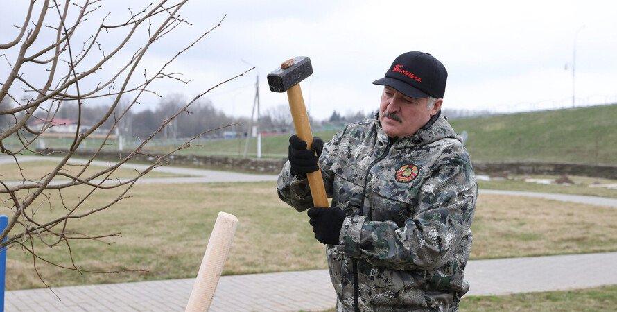 Лукашенко, Олександр Лукашенко, беларусь, президент