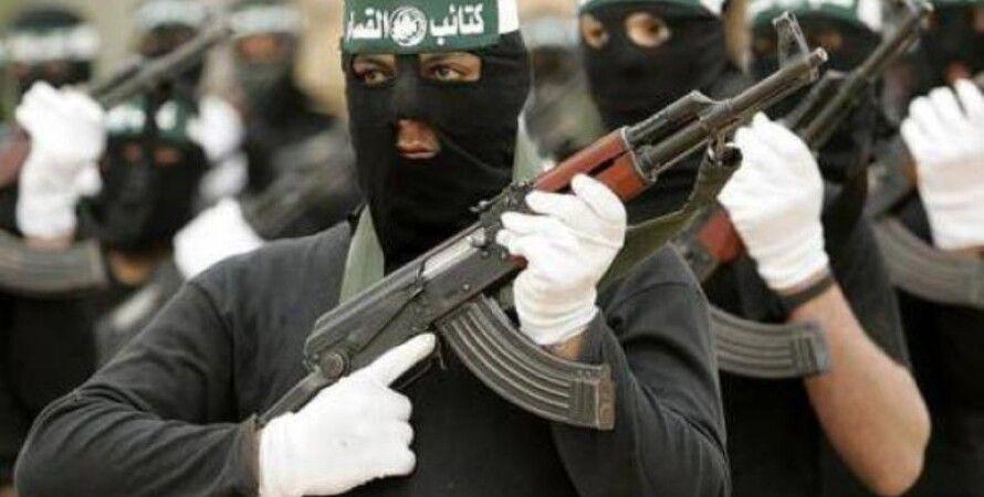Бойцы Аль-Каиды / Фото из открытых источников