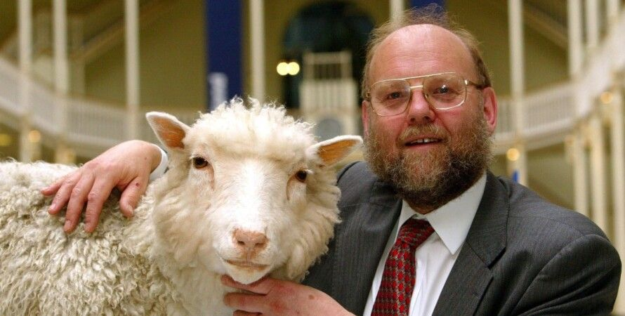 клонування, вівця Доллі, тварини