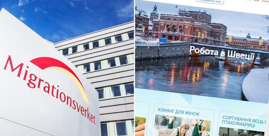 Швеция, трудоустройство, убежище, лазейка