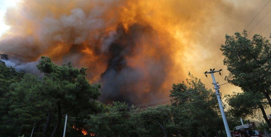 Туреччина, пожежі в Туреччині, лісові пожежі в Туреччині