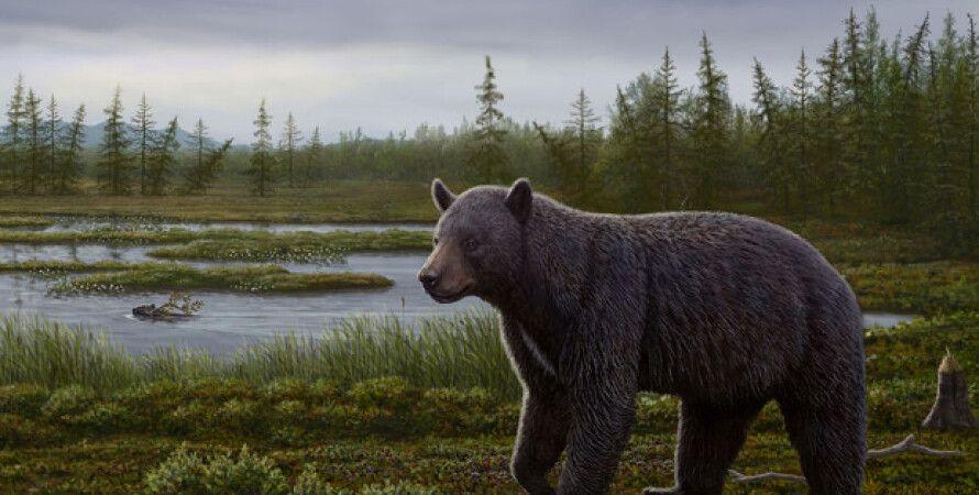 Реконструкция внешнего вида Protarctos abstrusus / Иллюстрация: Canadian Museum of Nature