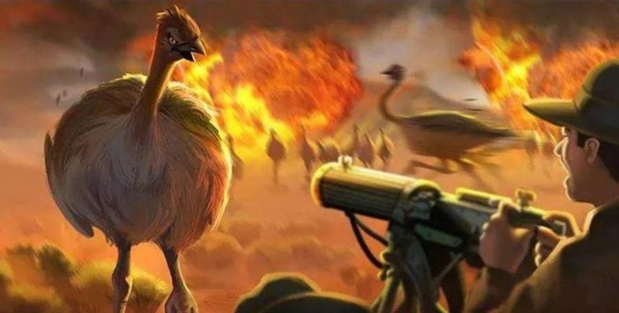 Австралия, пулеметы, война эму, страусы