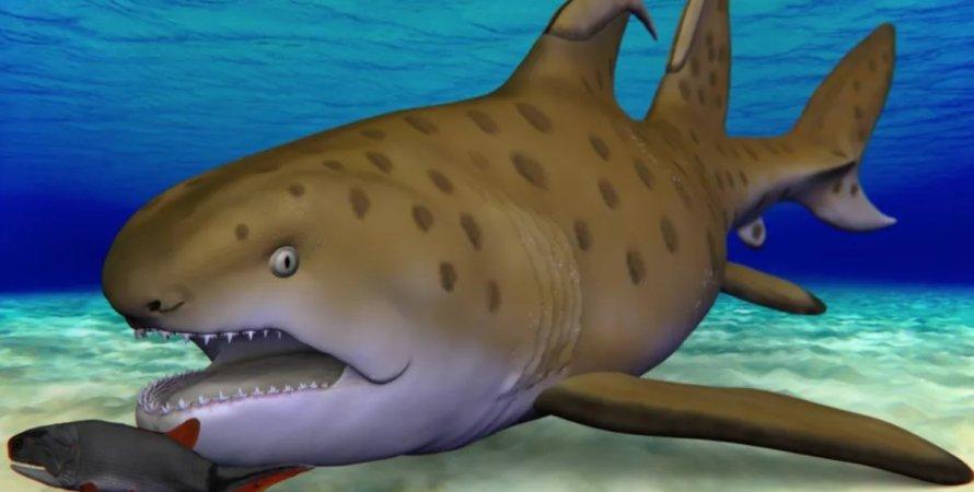 акула, Годзілла, палеонтологія, скам'янілості