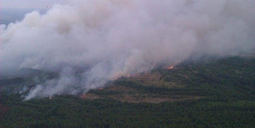 Пожар в зоне отчуждения / Фото пресс-службы ГСЧС