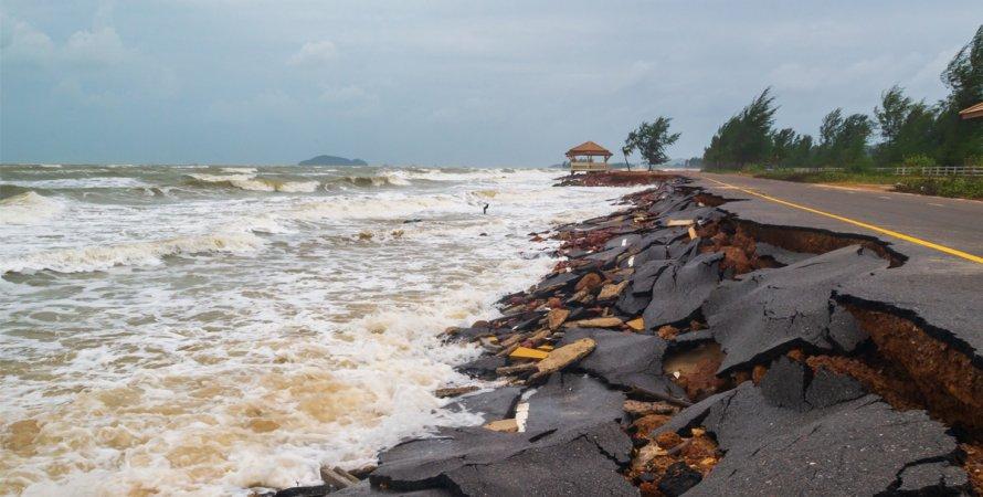 шторм, разруха, асфальт, дорога, деревья, ураган, фото