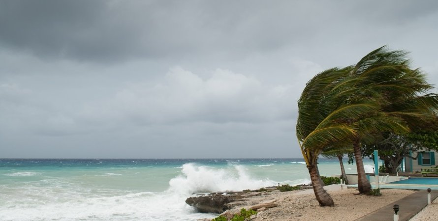 шторм, вода, пальмы, небо, фото