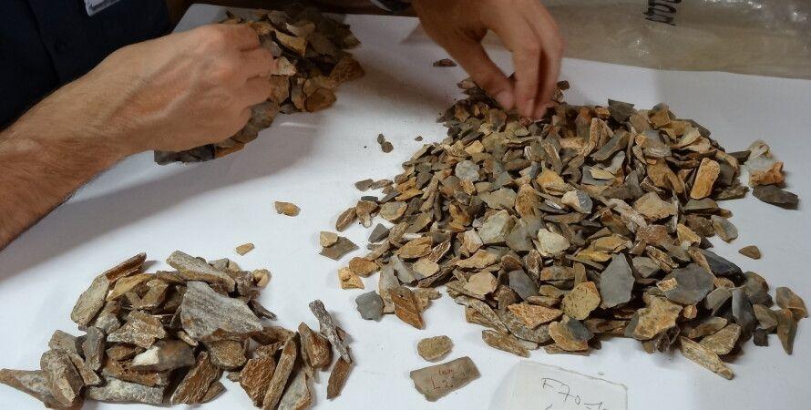 останки, неандертальцы