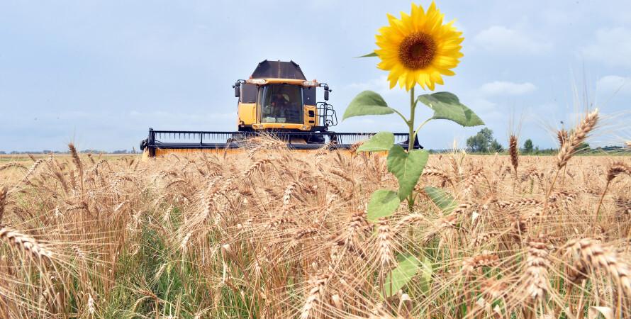 урожай 2021, ціни на зернові, аграрії