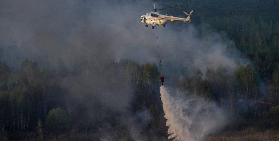 """Тушение пожара в """"Чернобыльской пуще"""" / Фото: Facebook.com/yatsenyuk.arseniy"""