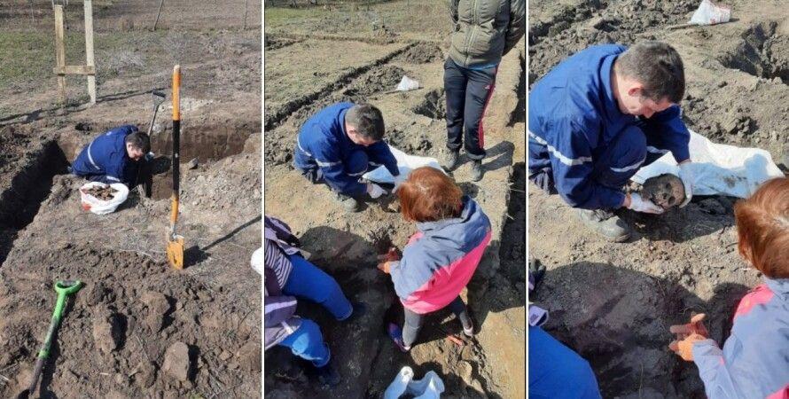 Голодомор, Бориспіль, розкопки