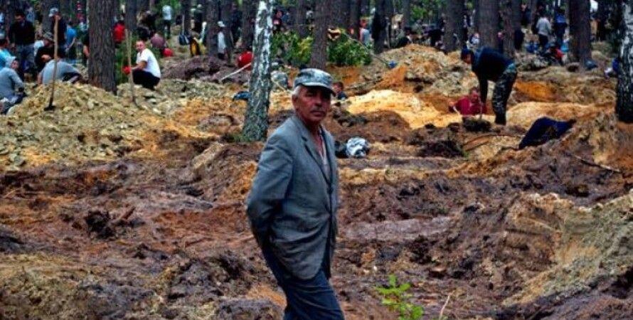 Фото: openforest.org.ua