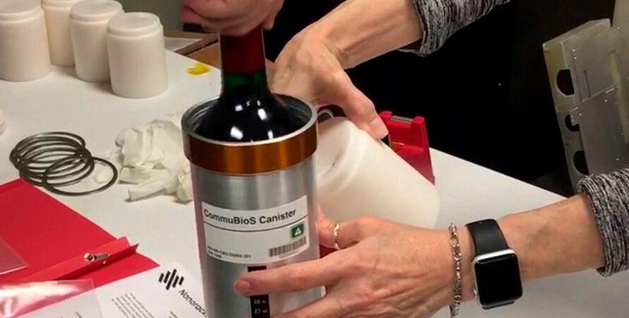 вино бордо, МКС, виноград, Франция