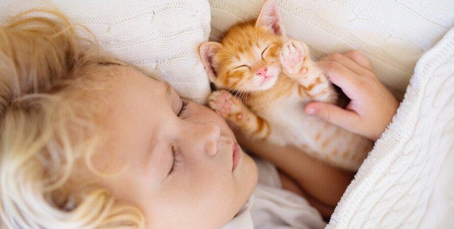котенок, ребенок, сон