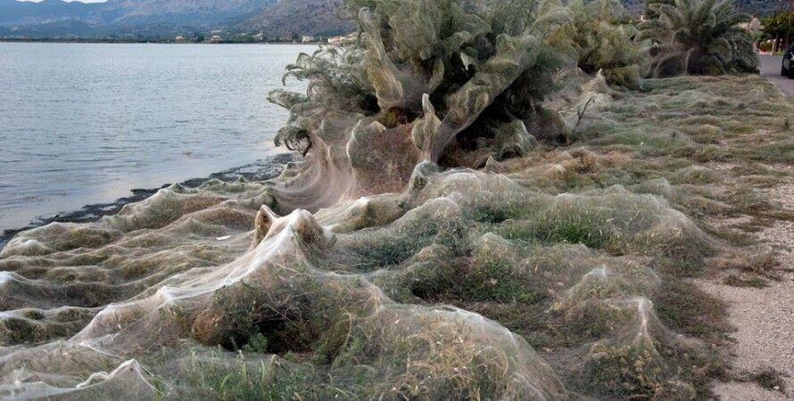 Фото:agrinionews.gr