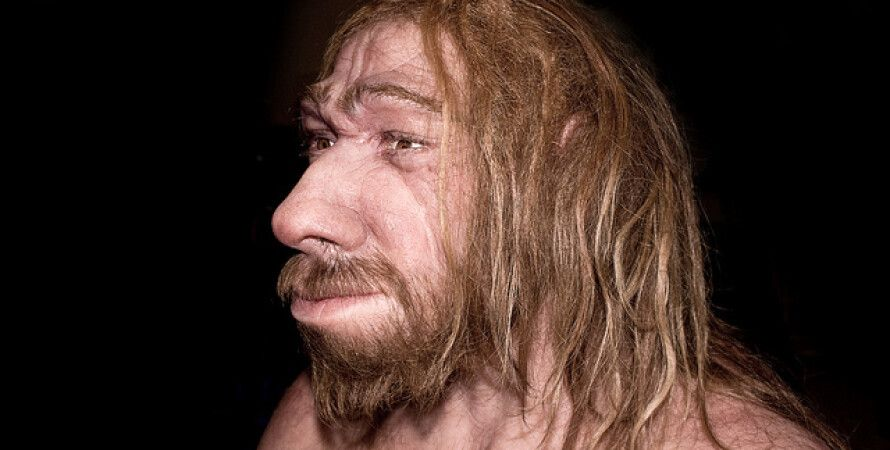 Реконструкция неандертальца из Манчестерского музея / Фото: avantyra.com