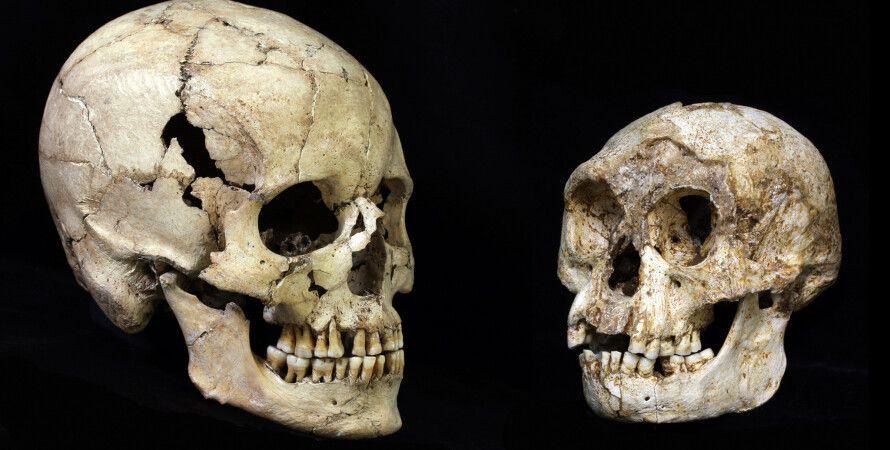 черепа, кости, люди