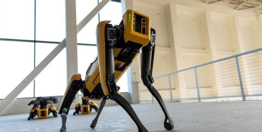 Собака-робот, Spot, Нью-Йорк, полиция, Boston Dynamics