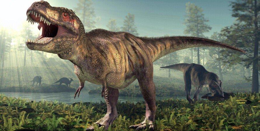 тираннозавр рекс, динозавр