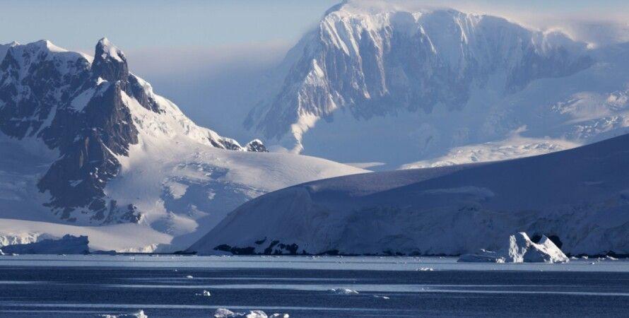 Антарктика / Фото из открытого источника