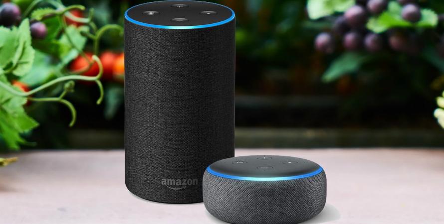 Amazon, Amazon Echo, Amazon Alexa, помощник Amazon Alexa, голос Amazon Alexa